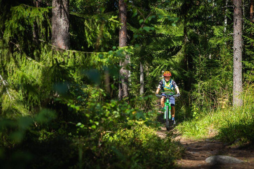 Kuvituskuva metsäsisestä polusta ja maastopyöräilijästä.