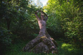 Lanu-puiston veistokset ovat luonnon keskellä yllättävissä paikoissa.
