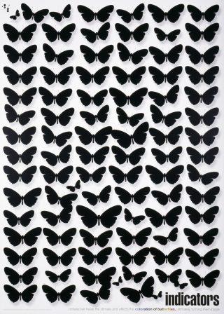 Indikaattorit-julisteessa on perhosia.