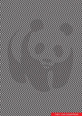 Julisteessa on panda, joka katoaa visuaalisen efektin vuoksi taustaan.